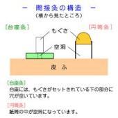 yjimage9
